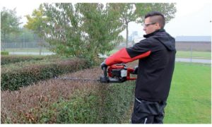 Best cordless Hedge Trimmer of 2021 Complete Reviews