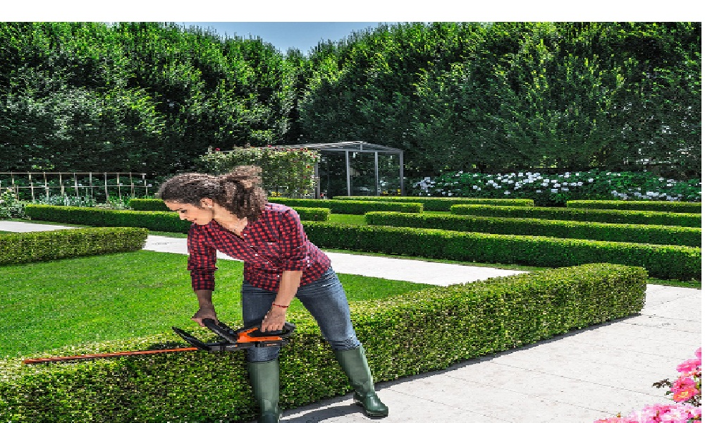 Worx Cordless Electric Hedge Trimmer Review